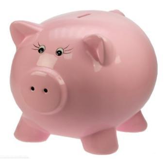 Tirelire-Cochon-i3df-auto-financement